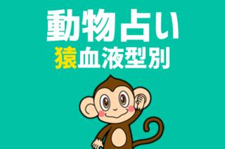 【動物占い×血液型】「猿」の血液型別診断と相性の良いどうぶつの紹介