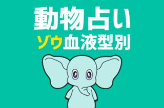 【動物占い×血液型】「ゾウ」の血液型別診断と相性の良いどうぶつの紹介